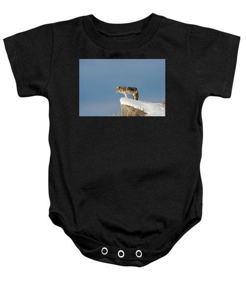Coyote At Overlook Baby Onesie