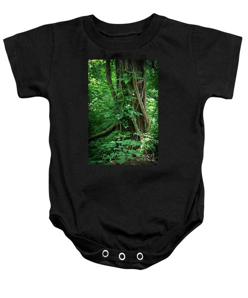 Creek And Wood At Roman Nose State Park #2 Baby Onesie