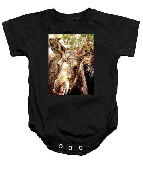 Cutie Moose Baby Onesie