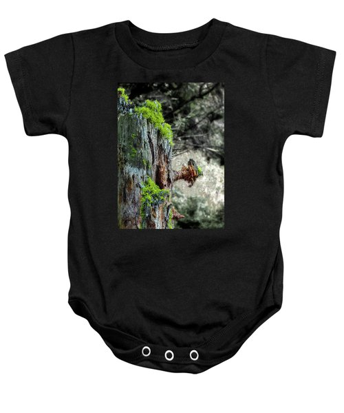 Death And Life Along The Path Baby Onesie