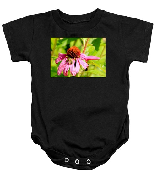 Echinacea Bee Baby Onesie