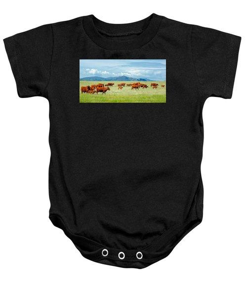 Field Of Reds Baby Onesie