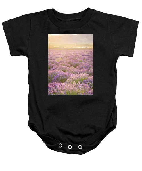 Fields Of Lavender Baby Onesie