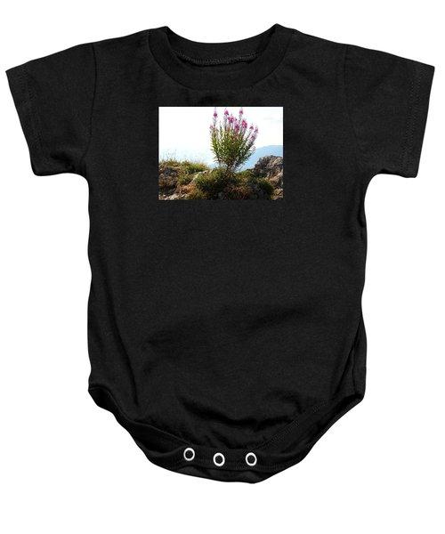Fireweed Epilobium Angustifolium Baby Onesie