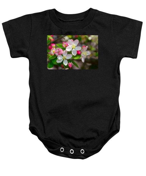 Flowering Cherry Tree Blossoms Baby Onesie