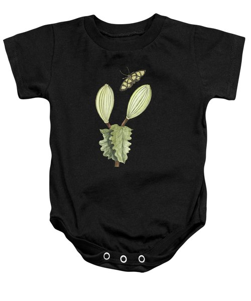Gitte Gom Plant With Fruit And Butterfly By Cornelis Markee 1763 Baby Onesie
