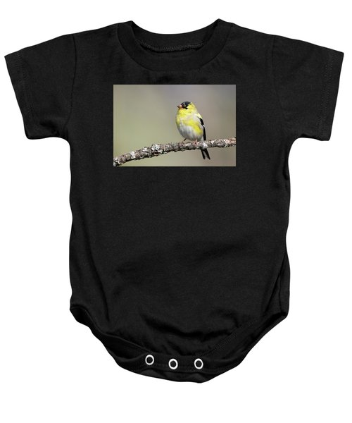 Gold Finch Baby Onesie