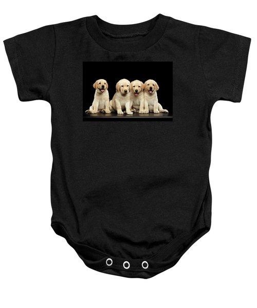 Golden Labrador Retriever Puppies Isolated On Black Background Baby Onesie