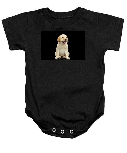 Golden Labrador Retriever Puppy Isolated On Black Background Baby Onesie