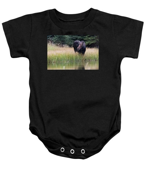 Baby Onesie featuring the photograph Grand Teton Moose by Jennifer Ancker