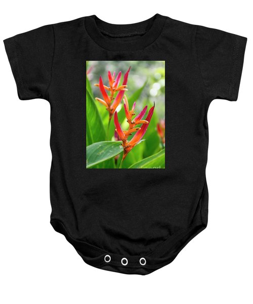 Heliconia Psittacorum Baby Onesie