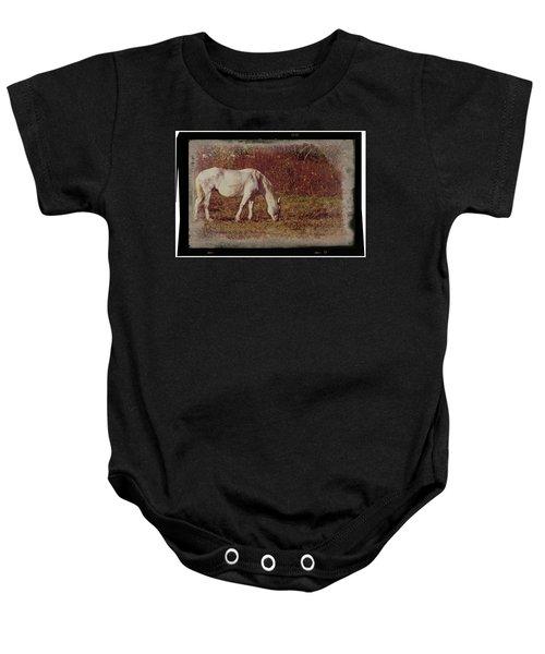 Horse Grazing Baby Onesie