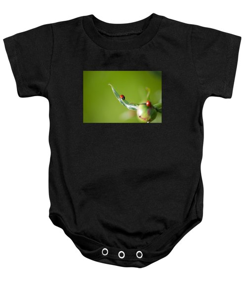 Ladybug On Flower Baby Onesie by Konstantin Sevostyanov