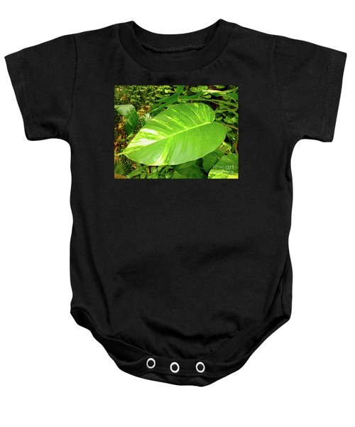 Baby Onesie featuring the photograph Large Leaf by Francesca Mackenney