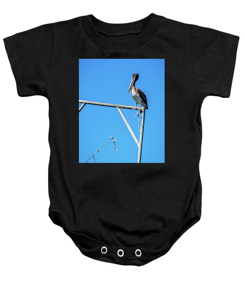 Louisiana's State Bird Baby Onesie