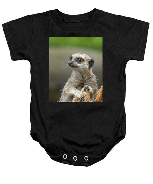Meerkat Model Baby Onesie