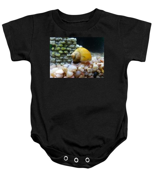 Mystery Snail Baby Onesie