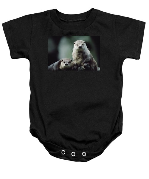 North American River Otter Lontra Baby Onesie by Gerry Ellis