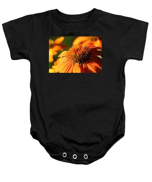 Orange Coneflower At First Light Baby Onesie