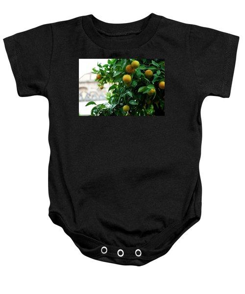 Orange Tree Baby Onesie
