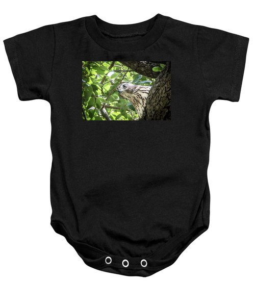 Red-shouldered Hawk Fledgling - 5 Baby Onesie