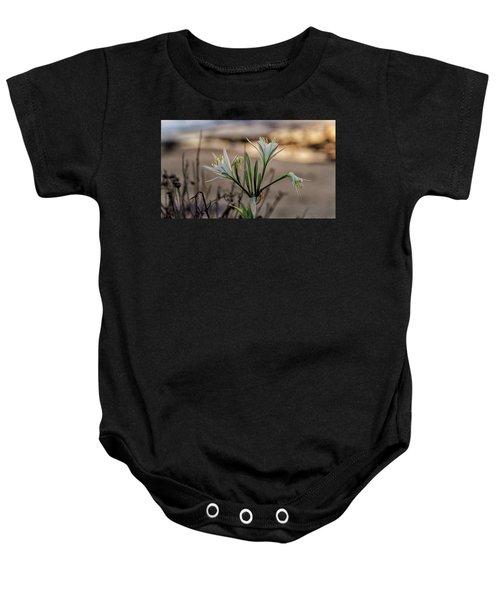 Pancratium Maritimum L. Baby Onesie