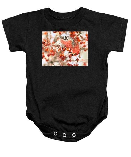Pine Grosbeak Baby Onesie
