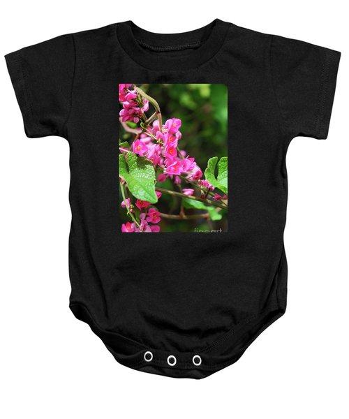 Pink Flowering Vine3 Baby Onesie