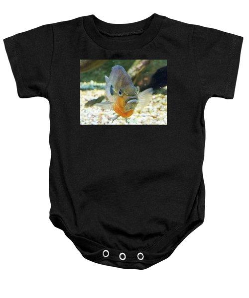 Piranha Behind Glass Baby Onesie