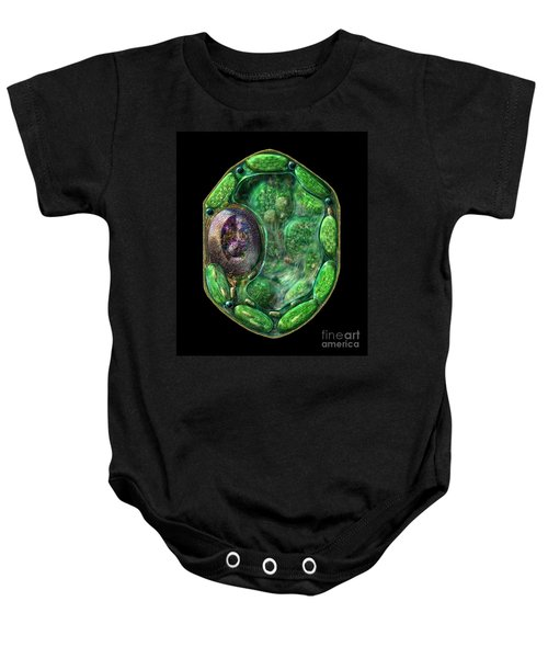 Plant Cell Baby Onesie