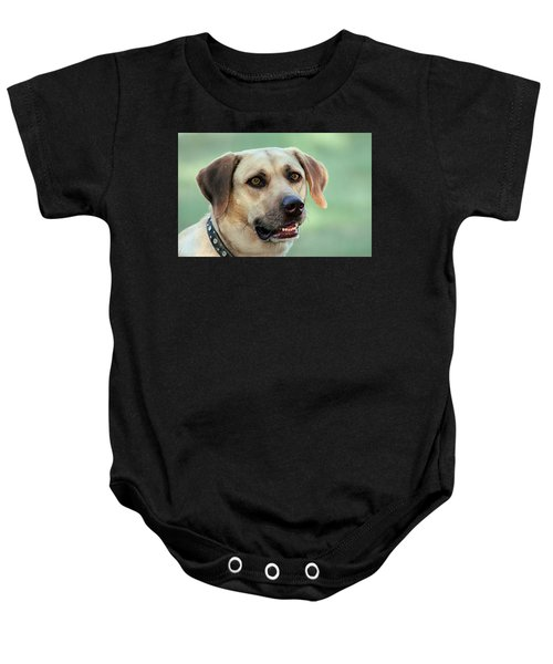 Portrait Of A Yellow Labrador Retriever Baby Onesie