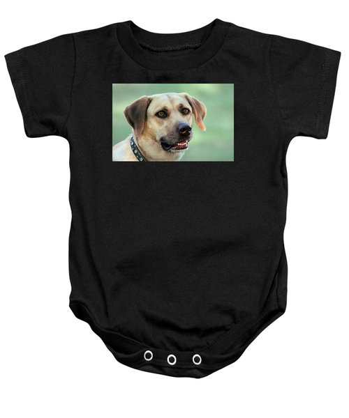 Portrait Of A Yellow Labrador Retriever Baby Onesie
