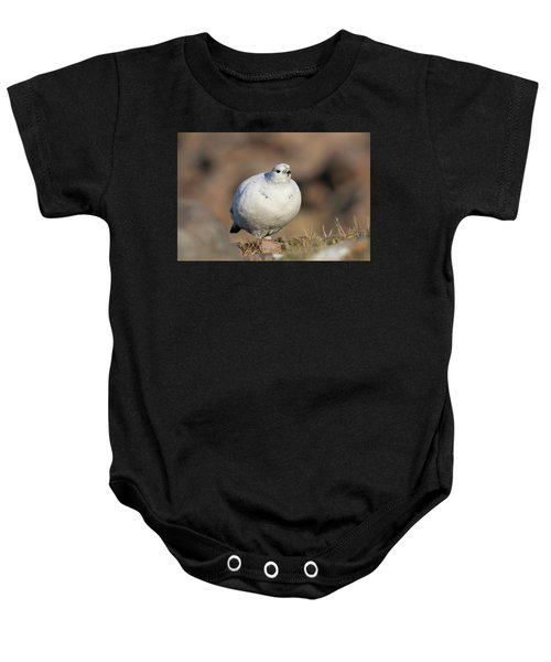 Ptarmigan Going For A Stroll Baby Onesie