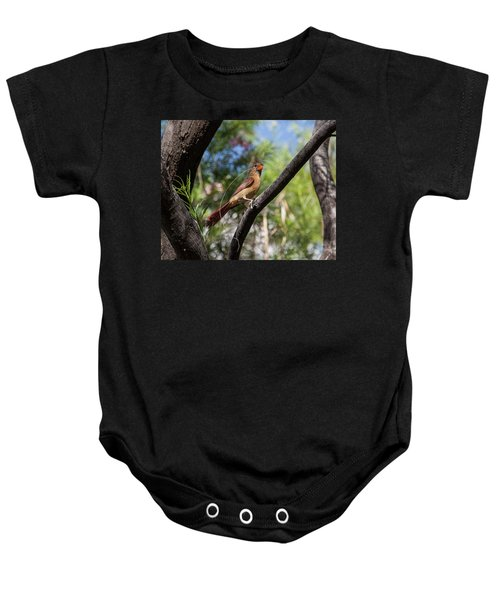 Pyrrhuloxia At Work Baby Onesie