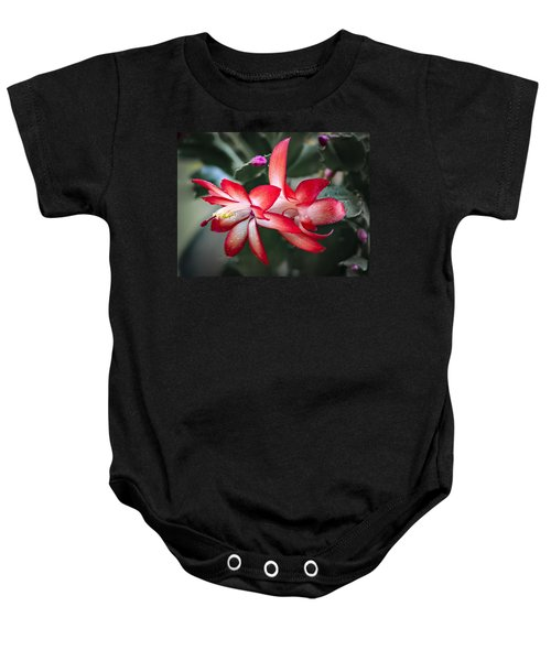Red Christmas Cactus Baby Onesie