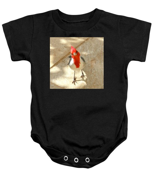 Red-crested Cardinal At My Feet Baby Onesie