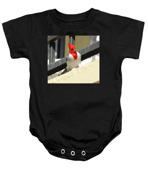 Red-crested Cardinal Posing On The Balcony Baby Onesie