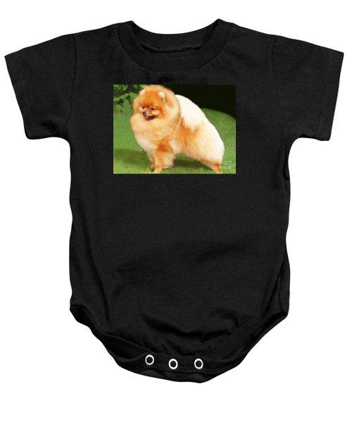 Sable Pomeranian Baby Onesie