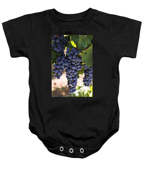 Sauvignon Grapes Baby Onesie