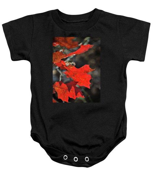 Scarlet Autumn Baby Onesie