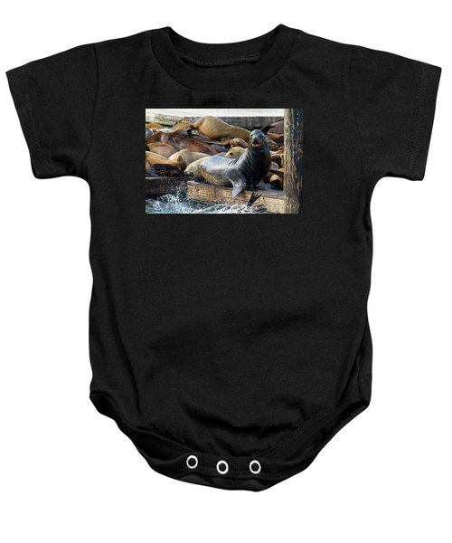 Sea Lions On The Floating Dock In San Francisco Baby Onesie