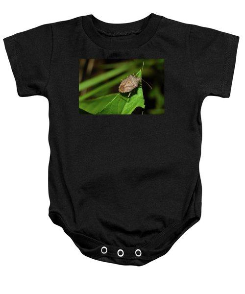 Shield Bug Baby Onesie