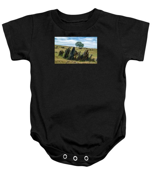 Slate Filled Meadow Baby Onesie