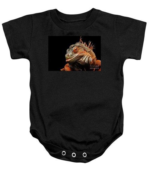 smiling Orange iguana isolated on black  Baby Onesie