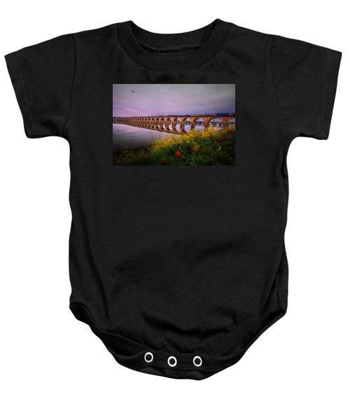 Springtime Reflections From Shipoke Baby Onesie