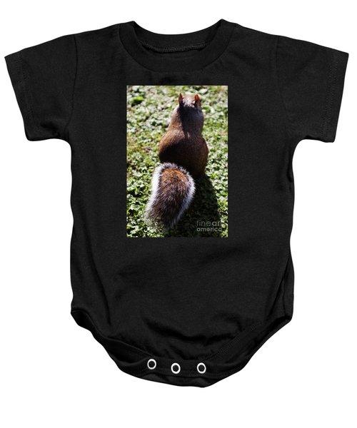 Squirrel S Back Baby Onesie