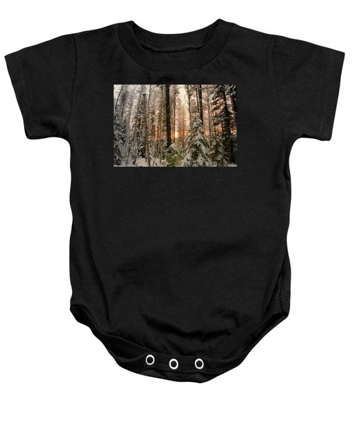 Sun Of Winter Trees Baby Onesie