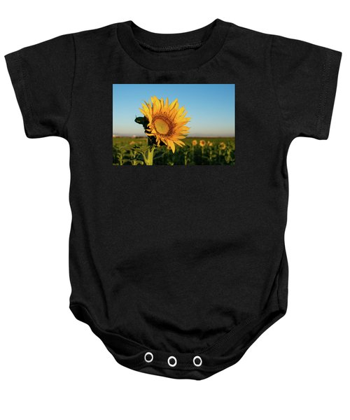 Sunflowers At Sunrise 2 Baby Onesie