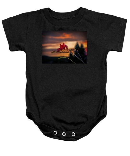 Sunset Crocosmia Baby Onesie