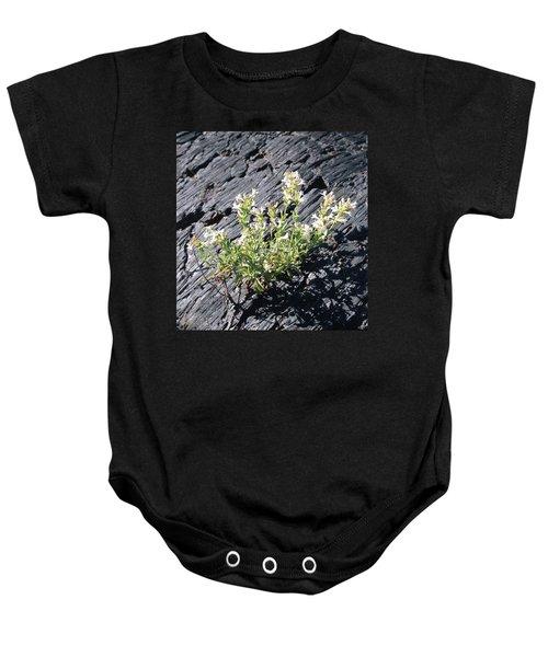 T-107709 Hot Rock Penstemon Baby Onesie